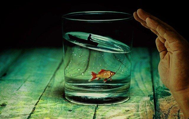 water-glass-2542790_640.jpg